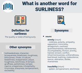 surliness, synonym surliness, another word for surliness, words like surliness, thesaurus surliness