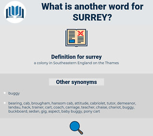 surrey, synonym surrey, another word for surrey, words like surrey, thesaurus surrey