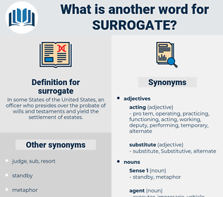 surrogate, synonym surrogate, another word for surrogate, words like surrogate, thesaurus surrogate