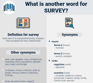 survey, synonym survey, another word for survey, words like survey, thesaurus survey