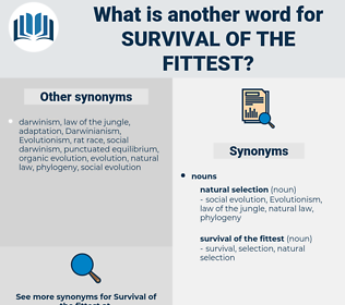 survival of the fittest, synonym survival of the fittest, another word for survival of the fittest, words like survival of the fittest, thesaurus survival of the fittest