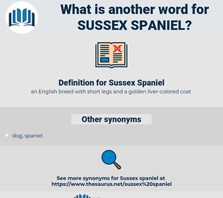 Sussex Spaniel, synonym Sussex Spaniel, another word for Sussex Spaniel, words like Sussex Spaniel, thesaurus Sussex Spaniel