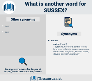 sussex, synonym sussex, another word for sussex, words like sussex, thesaurus sussex