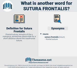 Sutura Frontalis, synonym Sutura Frontalis, another word for Sutura Frontalis, words like Sutura Frontalis, thesaurus Sutura Frontalis