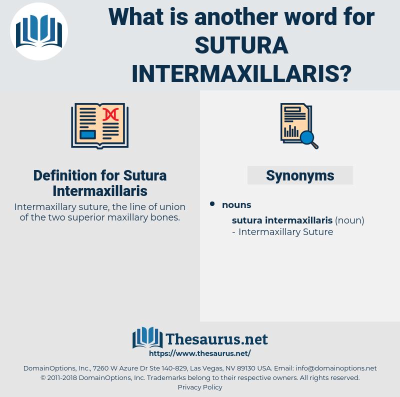 Sutura Intermaxillaris, synonym Sutura Intermaxillaris, another word for Sutura Intermaxillaris, words like Sutura Intermaxillaris, thesaurus Sutura Intermaxillaris