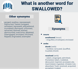 swallowed, synonym swallowed, another word for swallowed, words like swallowed, thesaurus swallowed