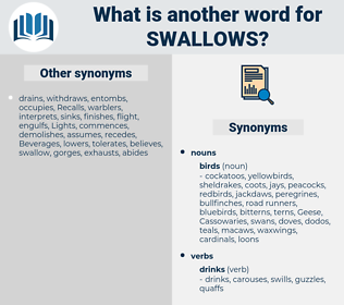 Swallows, synonym Swallows, another word for Swallows, words like Swallows, thesaurus Swallows