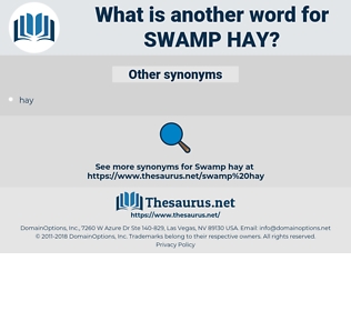 swamp hay, synonym swamp hay, another word for swamp hay, words like swamp hay, thesaurus swamp hay