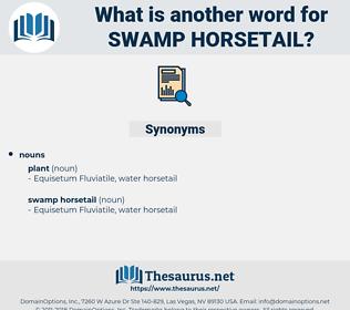 swamp horsetail, synonym swamp horsetail, another word for swamp horsetail, words like swamp horsetail, thesaurus swamp horsetail