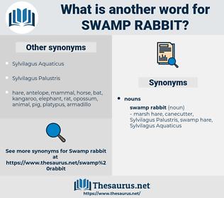 swamp rabbit, synonym swamp rabbit, another word for swamp rabbit, words like swamp rabbit, thesaurus swamp rabbit