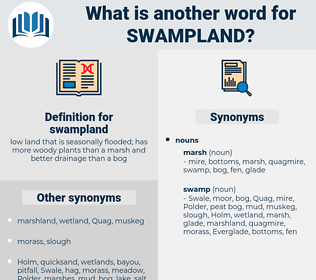 swampland, synonym swampland, another word for swampland, words like swampland, thesaurus swampland