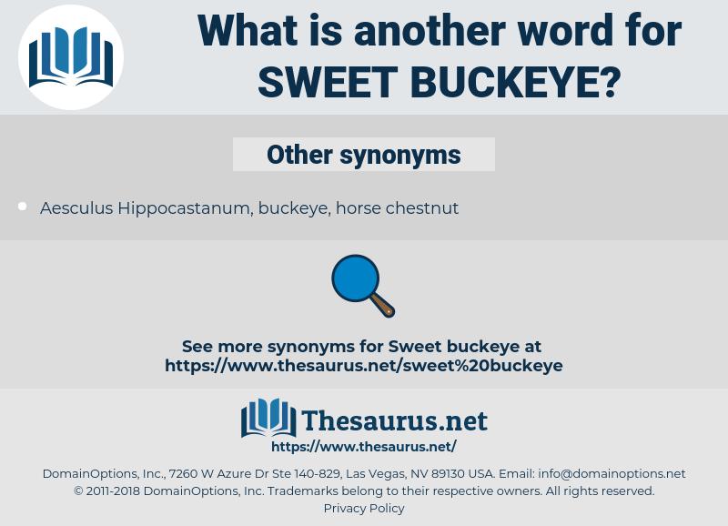 sweet buckeye, synonym sweet buckeye, another word for sweet buckeye, words like sweet buckeye, thesaurus sweet buckeye