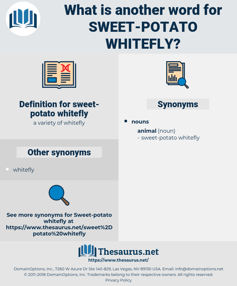 sweet-potato whitefly, synonym sweet-potato whitefly, another word for sweet-potato whitefly, words like sweet-potato whitefly, thesaurus sweet-potato whitefly
