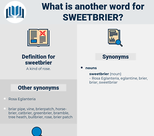 sweetbrier, synonym sweetbrier, another word for sweetbrier, words like sweetbrier, thesaurus sweetbrier