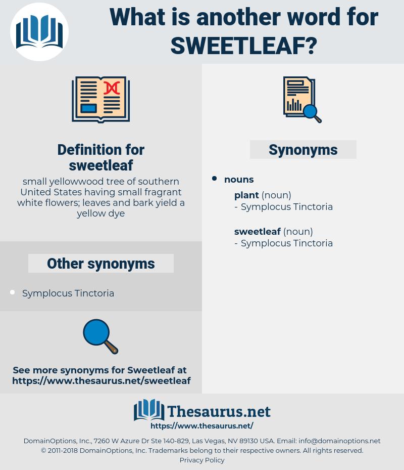 sweetleaf, synonym sweetleaf, another word for sweetleaf, words like sweetleaf, thesaurus sweetleaf