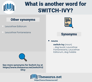 switch-ivy, synonym switch-ivy, another word for switch-ivy, words like switch-ivy, thesaurus switch-ivy