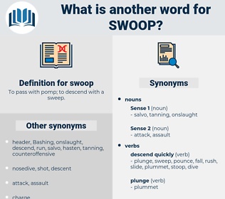 swoop, synonym swoop, another word for swoop, words like swoop, thesaurus swoop