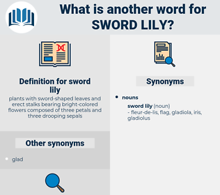 sword lily, synonym sword lily, another word for sword lily, words like sword lily, thesaurus sword lily