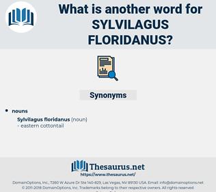 Sylvilagus Floridanus, synonym Sylvilagus Floridanus, another word for Sylvilagus Floridanus, words like Sylvilagus Floridanus, thesaurus Sylvilagus Floridanus