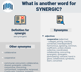 synergic, synonym synergic, another word for synergic, words like synergic, thesaurus synergic