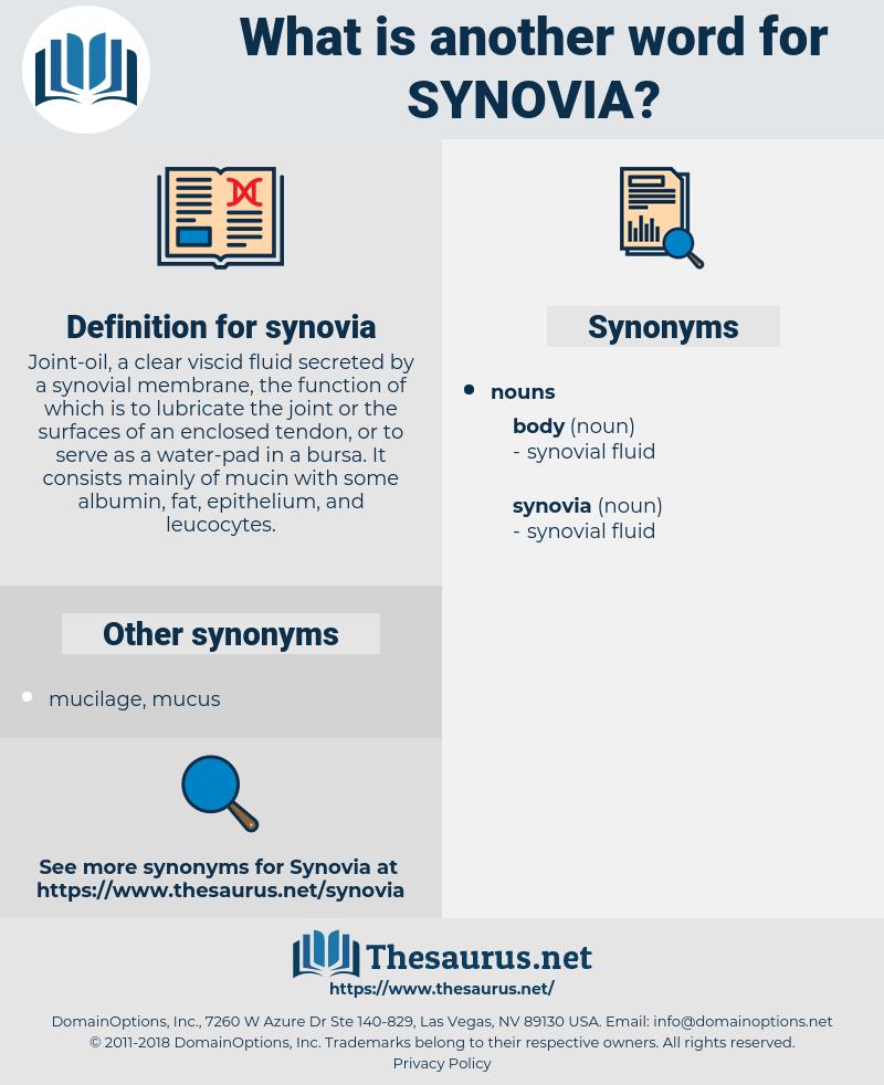 synovia, synonym synovia, another word for synovia, words like synovia, thesaurus synovia