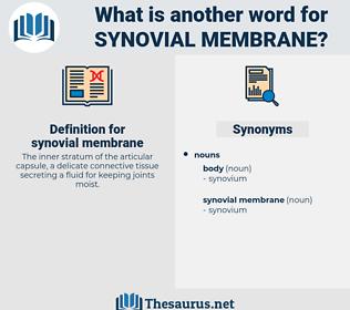 synovial membrane, synonym synovial membrane, another word for synovial membrane, words like synovial membrane, thesaurus synovial membrane