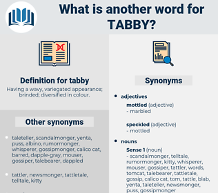 tabby, synonym tabby, another word for tabby, words like tabby, thesaurus tabby