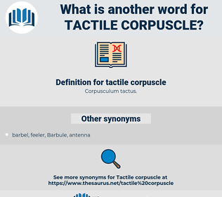 tactile corpuscle, synonym tactile corpuscle, another word for tactile corpuscle, words like tactile corpuscle, thesaurus tactile corpuscle