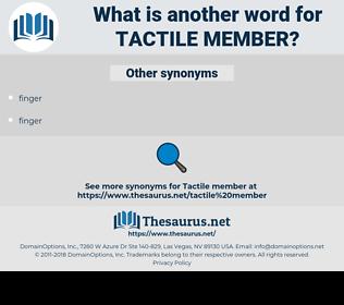 tactile member, synonym tactile member, another word for tactile member, words like tactile member, thesaurus tactile member