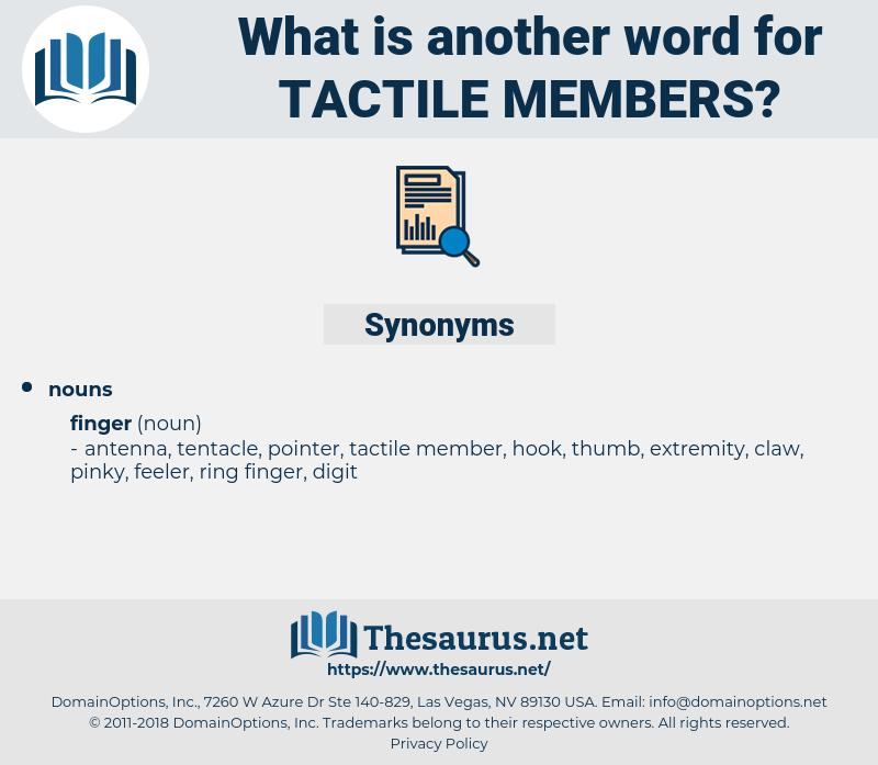 tactile members, synonym tactile members, another word for tactile members, words like tactile members, thesaurus tactile members