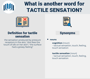 tactile sensation, synonym tactile sensation, another word for tactile sensation, words like tactile sensation, thesaurus tactile sensation