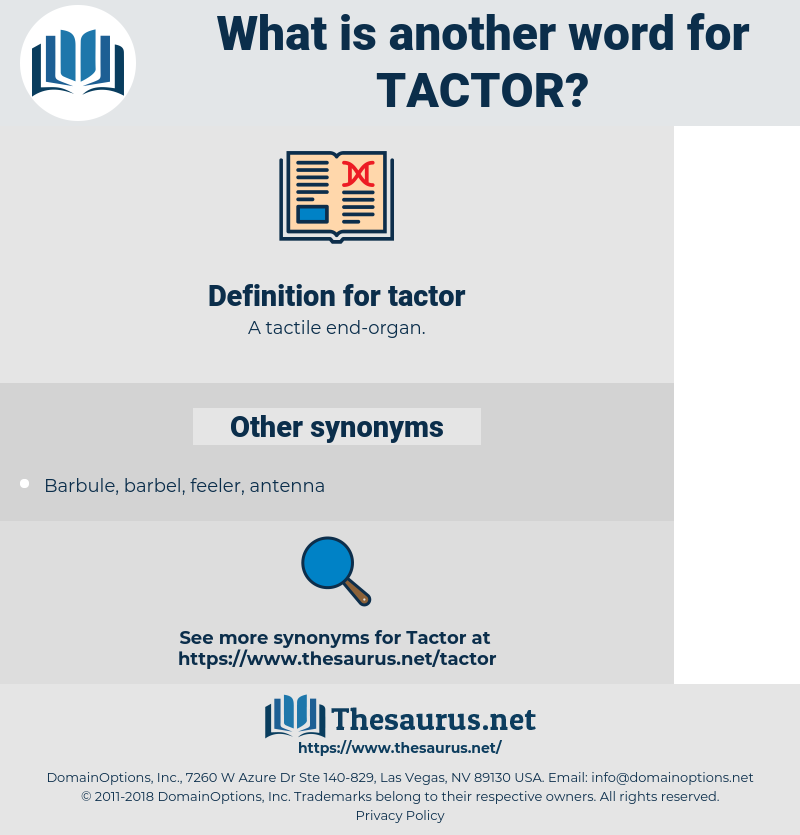 tactor, synonym tactor, another word for tactor, words like tactor, thesaurus tactor