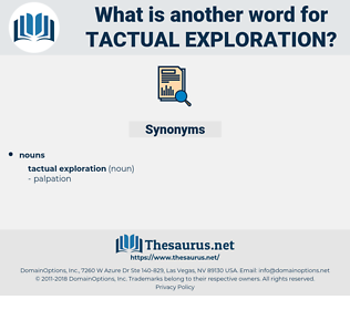 tactual exploration, synonym tactual exploration, another word for tactual exploration, words like tactual exploration, thesaurus tactual exploration