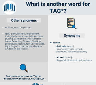 tag, synonym tag, another word for tag, words like tag, thesaurus tag