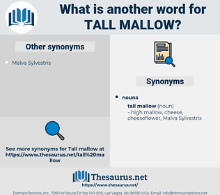 tall mallow, synonym tall mallow, another word for tall mallow, words like tall mallow, thesaurus tall mallow