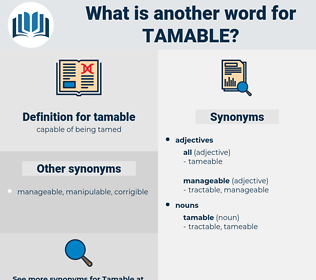 tamable, synonym tamable, another word for tamable, words like tamable, thesaurus tamable