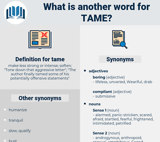tame, synonym tame, another word for tame, words like tame, thesaurus tame