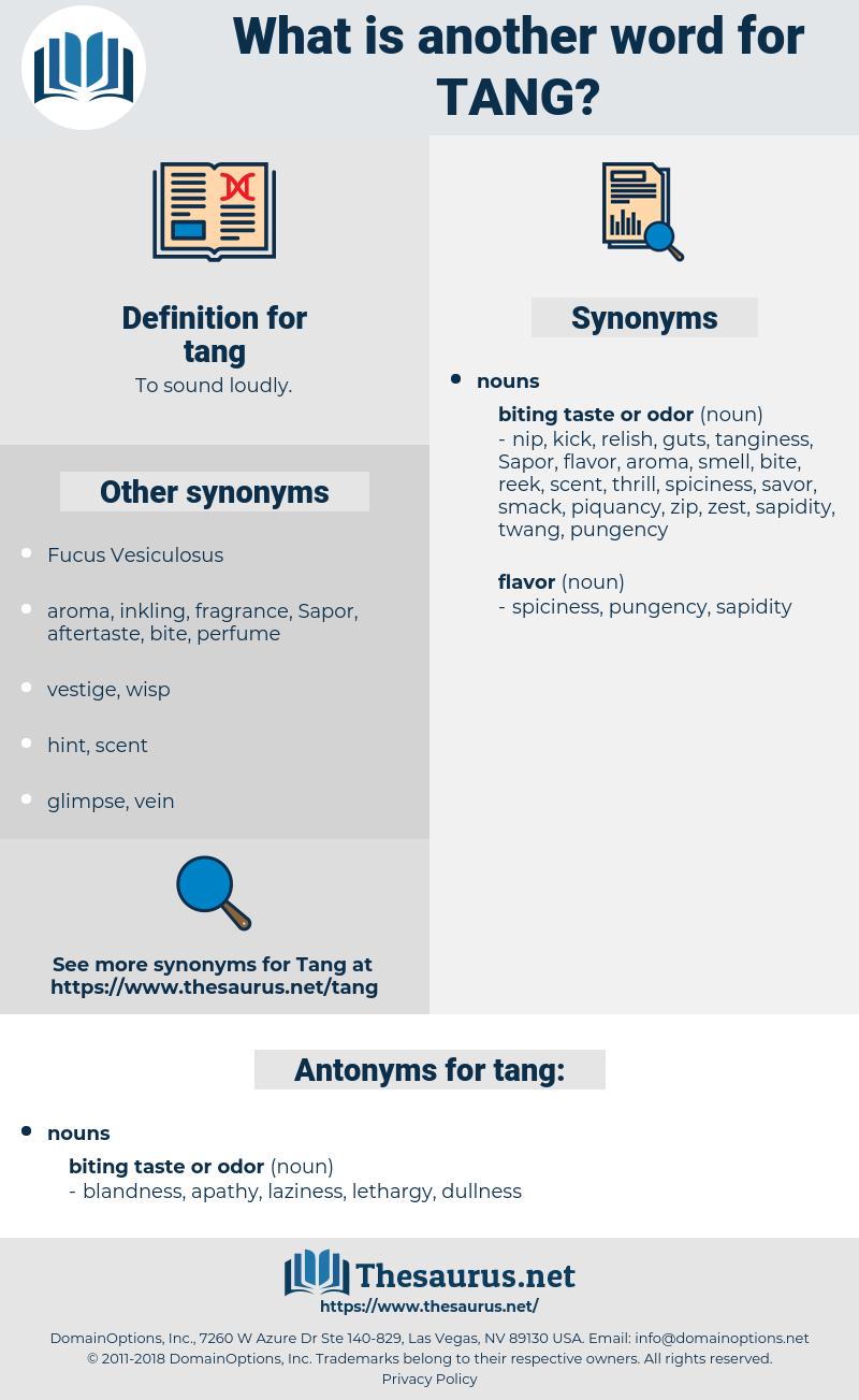 tang, synonym tang, another word for tang, words like tang, thesaurus tang