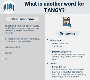 tangy, synonym tangy, another word for tangy, words like tangy, thesaurus tangy
