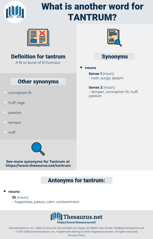 tantrum, synonym tantrum, another word for tantrum, words like tantrum, thesaurus tantrum