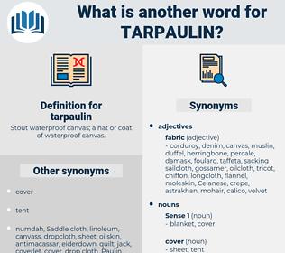 tarpaulin, synonym tarpaulin, another word for tarpaulin, words like tarpaulin, thesaurus tarpaulin