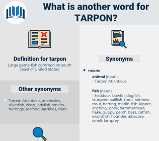 tarpon, synonym tarpon, another word for tarpon, words like tarpon, thesaurus tarpon