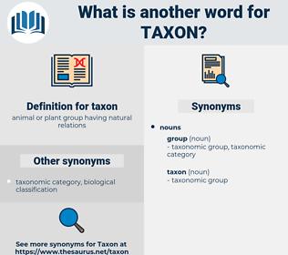 taxon, synonym taxon, another word for taxon, words like taxon, thesaurus taxon