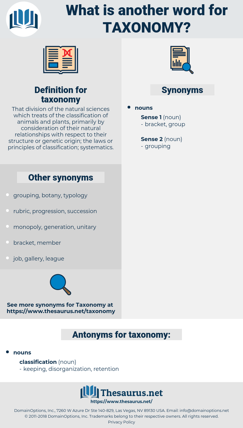 taxonomy, synonym taxonomy, another word for taxonomy, words like taxonomy, thesaurus taxonomy