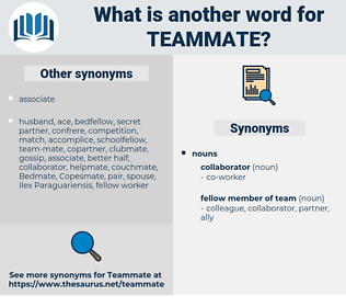 teammate, synonym teammate, another word for teammate, words like teammate, thesaurus teammate