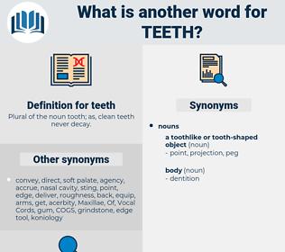 teeth, synonym teeth, another word for teeth, words like teeth, thesaurus teeth