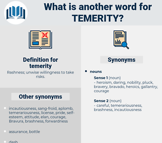 temerity, synonym temerity, another word for temerity, words like temerity, thesaurus temerity