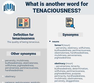 tenaciousness, synonym tenaciousness, another word for tenaciousness, words like tenaciousness, thesaurus tenaciousness