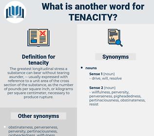 tenacity, synonym tenacity, another word for tenacity, words like tenacity, thesaurus tenacity