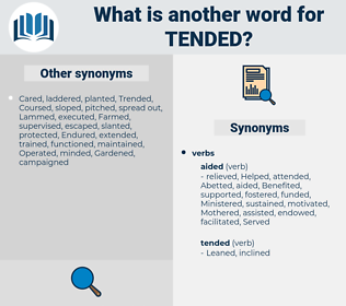 Tended, synonym Tended, another word for Tended, words like Tended, thesaurus Tended